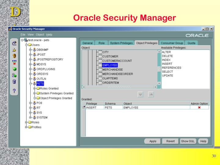 Oracle Security Manager