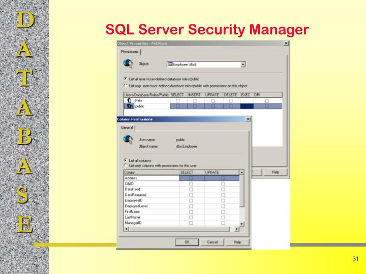 SQL Server Security Manager