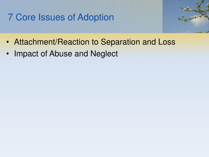 7 Core Issues of Adoption