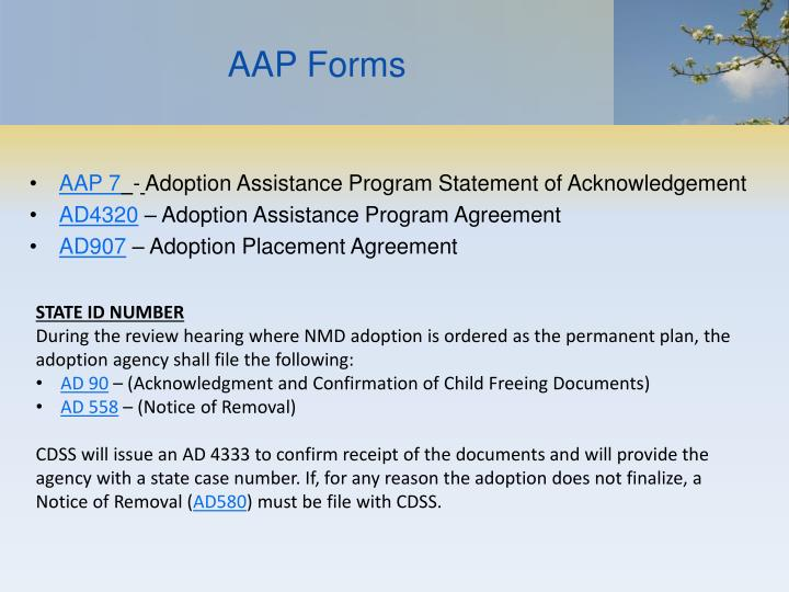 AAP Forms