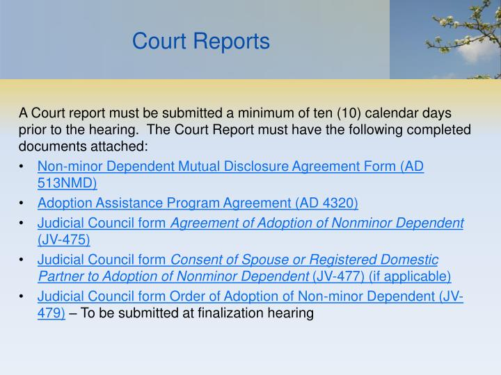 Court Reports