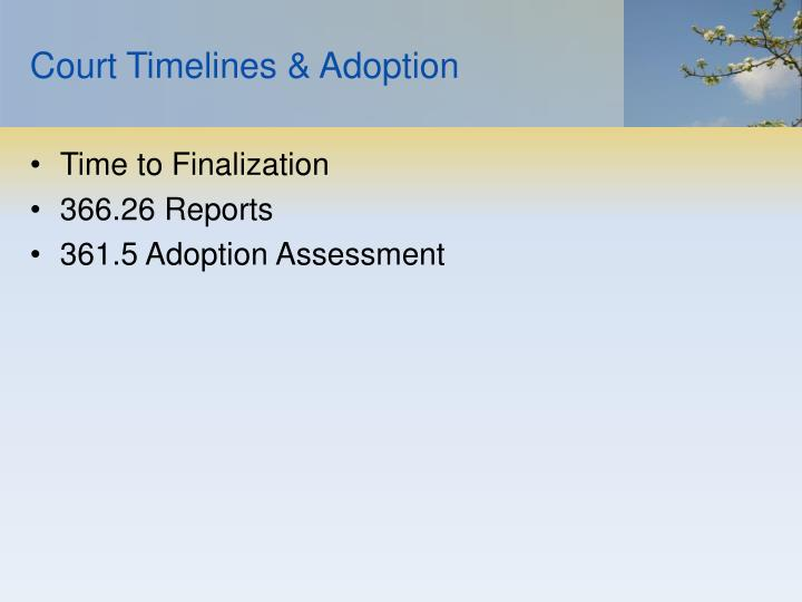 Court Timelines & Adoption