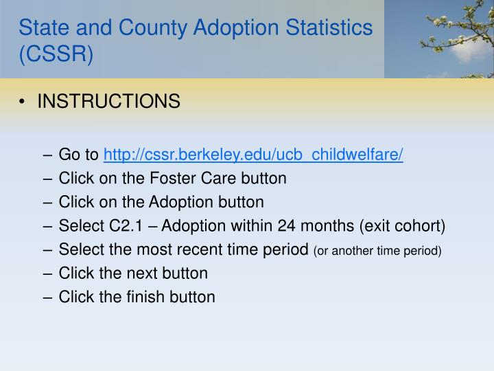 State and County Adoption Statistics (CSSR)