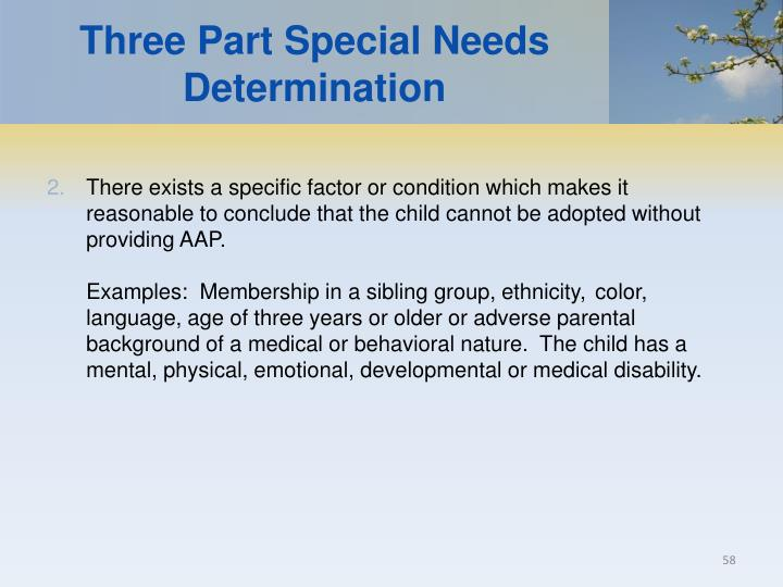 Three Part Special Needs Determination