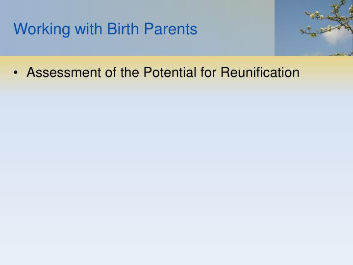 Working with Birth Parents