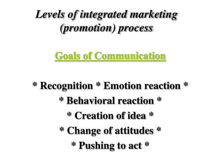 Levels of integrated marketing (promotion) process