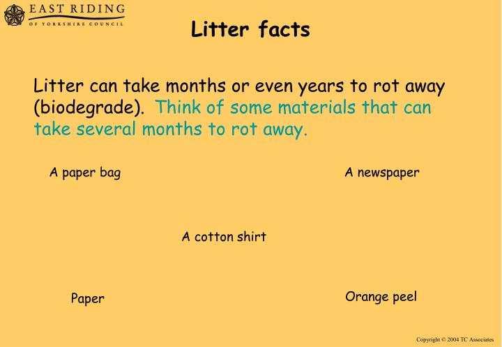 Litter facts