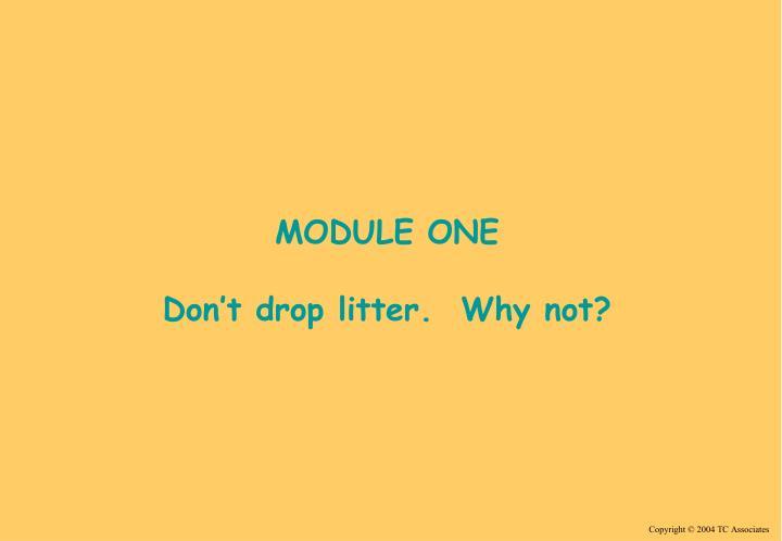 MODULE ONE