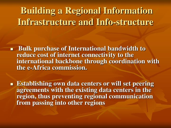 Building a Regional Information Infrastructure and Info-structure