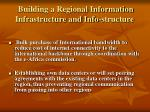 building a regional information infrastructure and info structure
