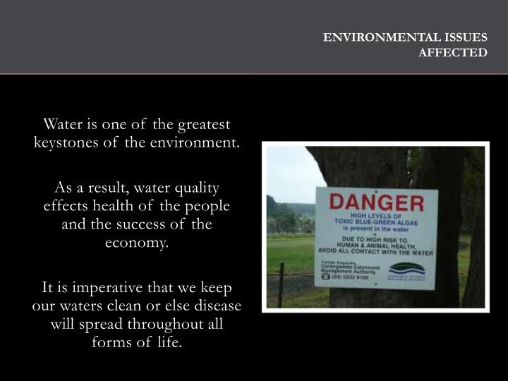 Environmental Issues Affected