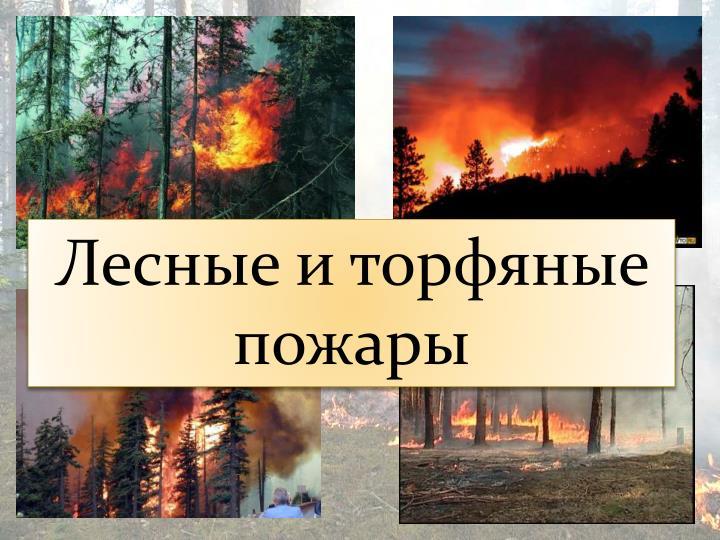 Лесные и торфяные пожары