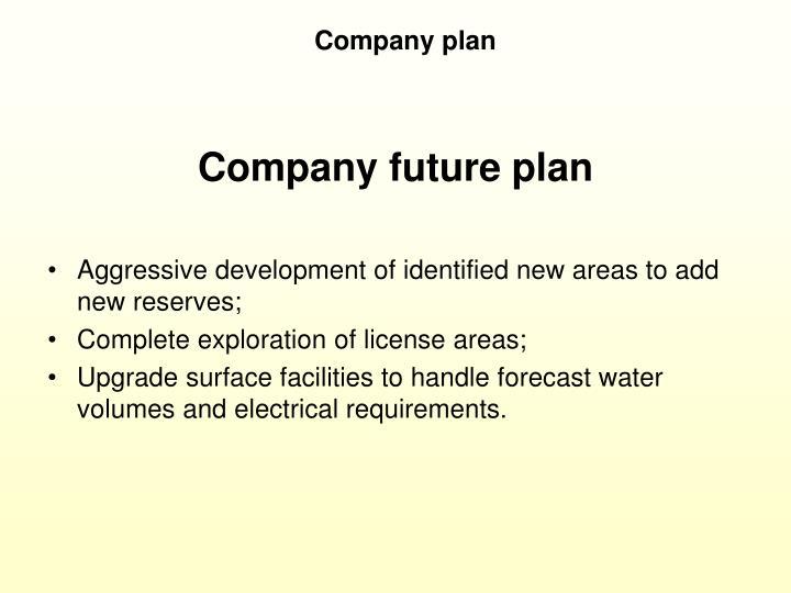 Company plan