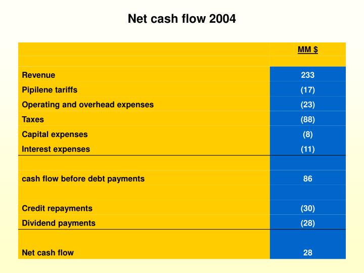 Net cash flow 2004