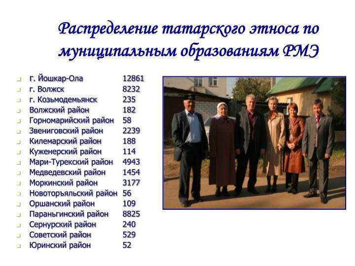 Распределение татарского этноса по муниципальным образовани