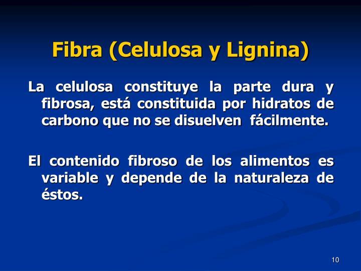 Fibra (Celulosa y Lignina)