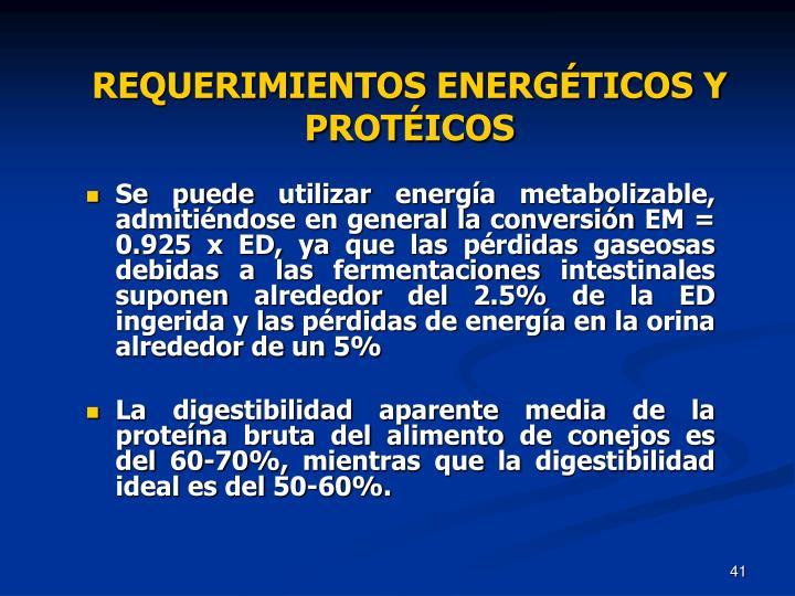 REQUERIMIENTOS ENERGÉTICOS Y PROTÉICOS