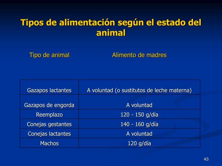 Tipos de alimentación según el estado del animal