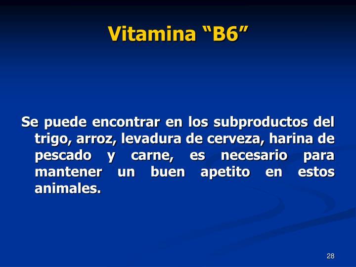 "Vitamina ""B6"""