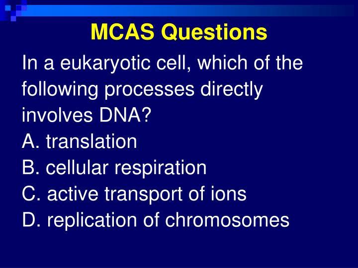 MCAS Questions