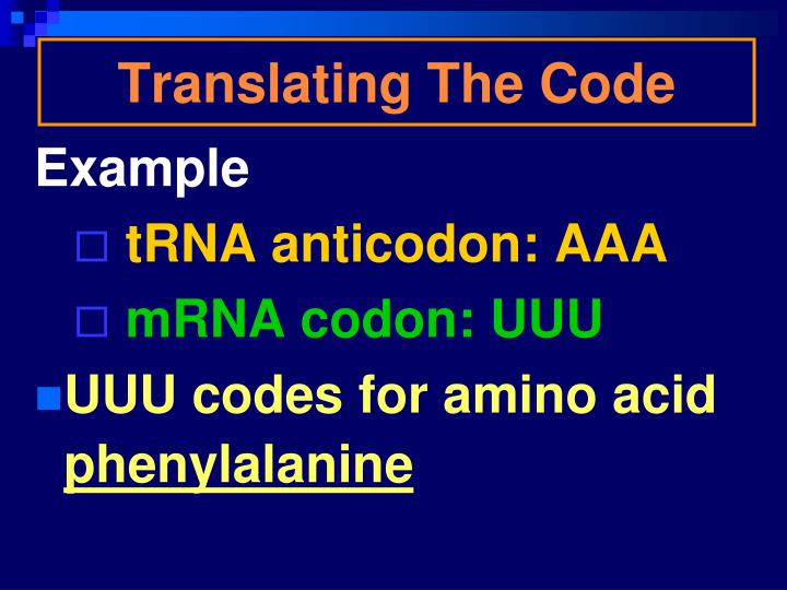 Translating The Code