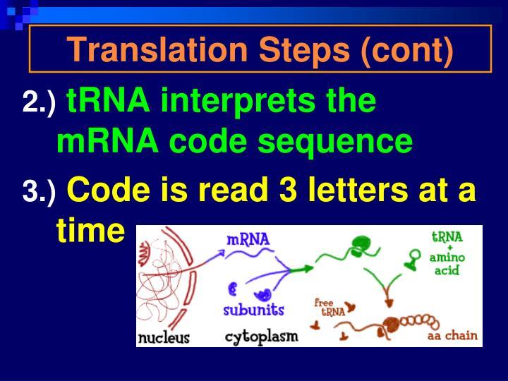Translation Steps (cont)