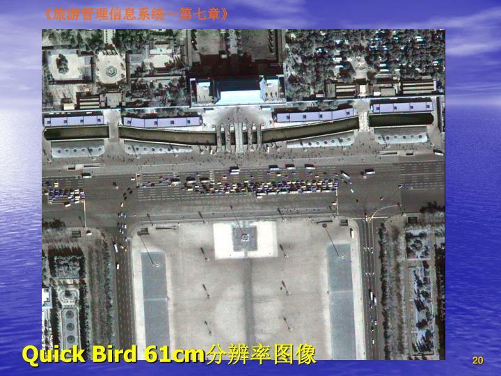 Quick Bird 61cm