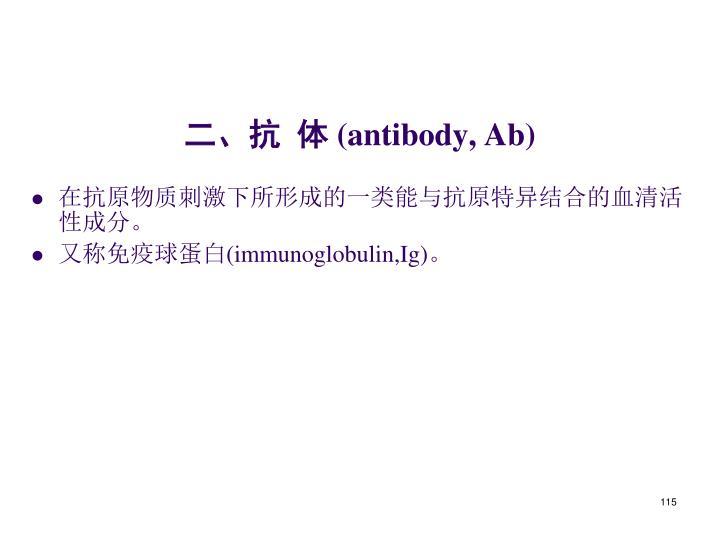 二、抗  体