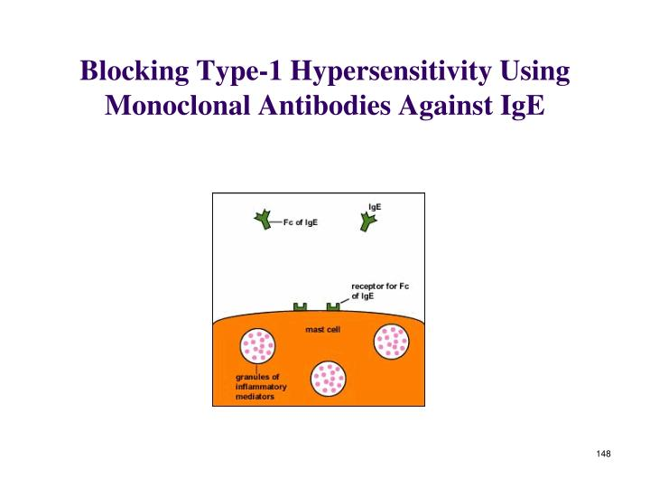 Blocking Type-1 Hypersensitivity Using Monoclonal Antibodies Against IgE