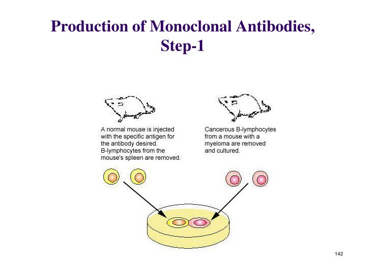 Production of Monoclonal Antibodies, Step-1