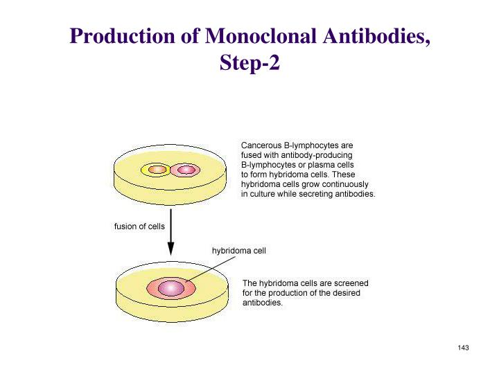 Production of Monoclonal Antibodies, Step-2