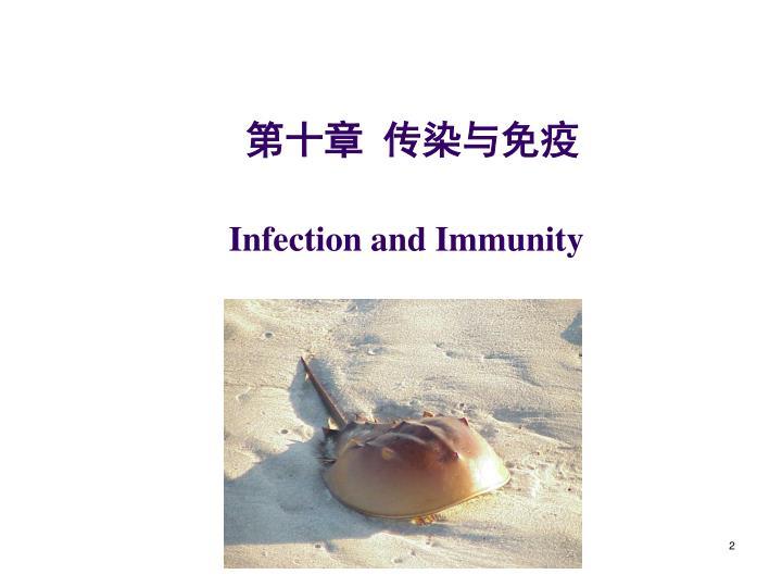 第十章 传染与免疫