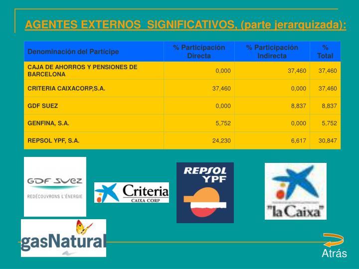 AGENTES EXTERNOS  SIGNIFICATIVOS, (parte jerarquizada):