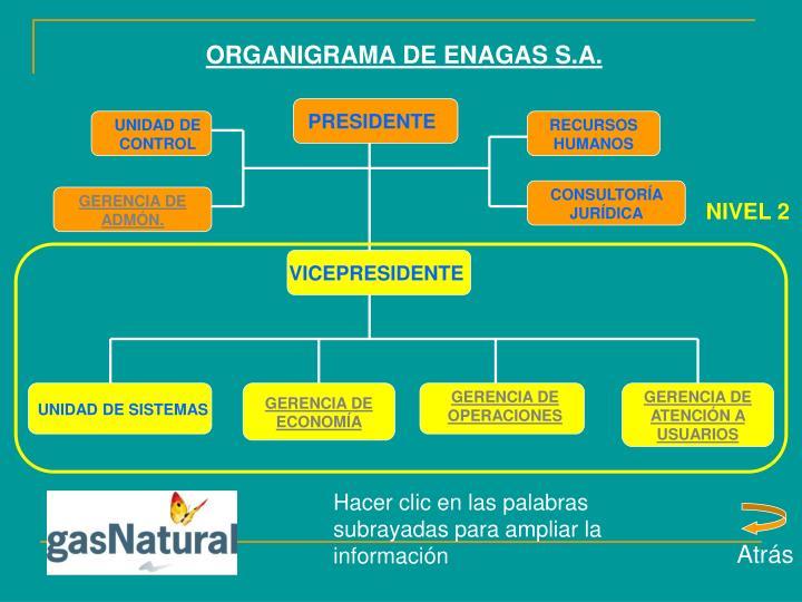 ORGANIGRAMA DE ENAGAS S.A.