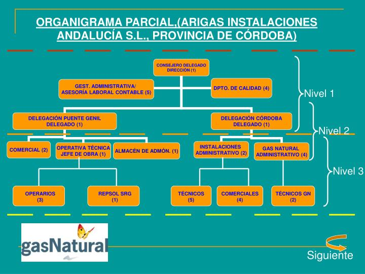 ORGANIGRAMA PARCIAL,(ARIGAS INSTALACIONES ANDALUCÍA S.L., PROVINCIA DE CÓRDOBA)