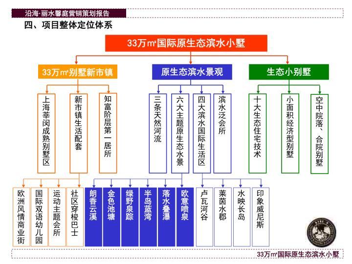 四、项目整体定位体系