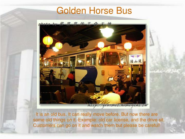Golden Horse Bus