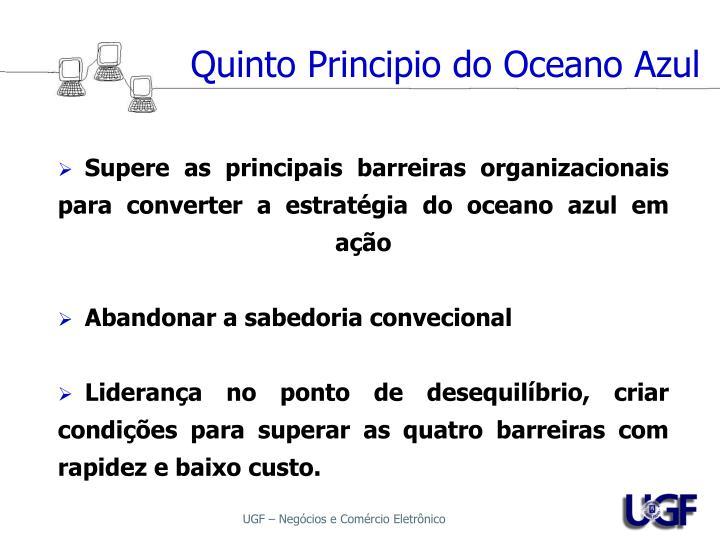 Quinto Principio do Oceano Azul