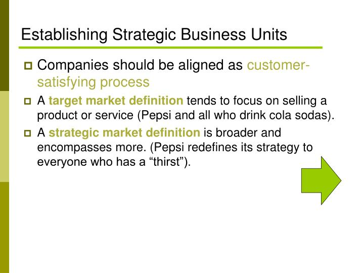 Establishing Strategic Business Units