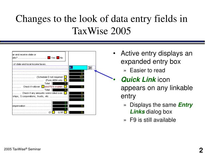 Changes to the look of data entry fields in TaxWise 2005