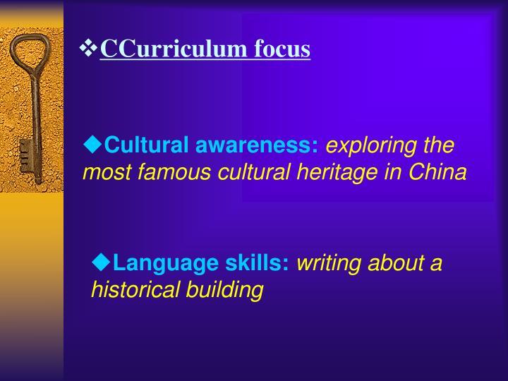 CCurriculum focus
