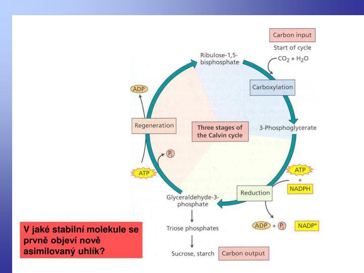 V jaké stabilní molekule se