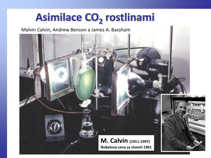 Asimilace CO