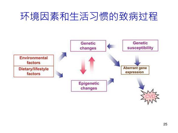 环境因素和生活习惯的致病过程