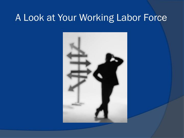 A Look at Your Working Labor Force