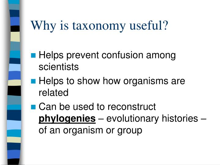 Why is taxonomy useful?