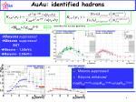 auau identified hadrons