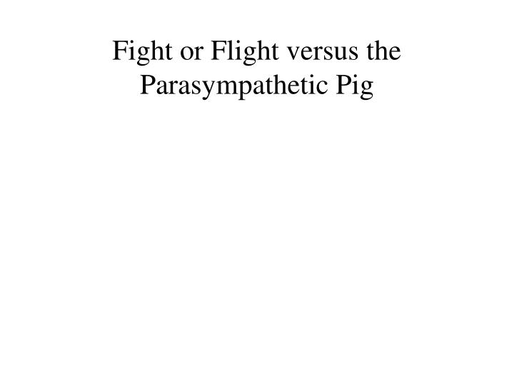 Fight or flight versus the parasympathetic pig