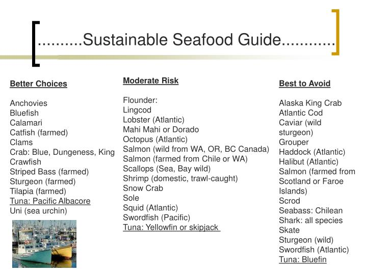 ..........Sustainable Seafood Guide............