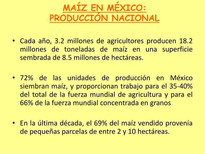 MAÍZ EN MÉXICO:  PRODUCCIÓN NACIONAL